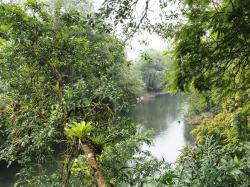 Estación biológica La Selva, Heredia