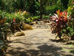 Jardín Botánico Else Kientzler, Alajuela
