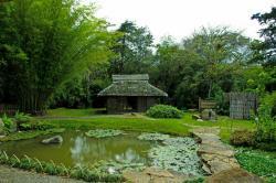 Jardín Botánico Lankester