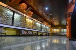 Museo de Ciencias Naturales La Salle, Costa Rica