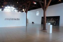 Museo de Arte y Diseño Contemporáneo, Costa Rica