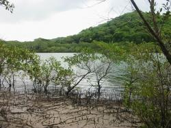 Parque Nacional Marino Las Baulas, Costa Rica
