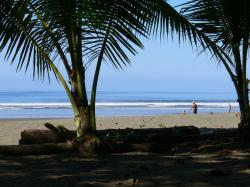 Playa Matapalo, Costa Rica