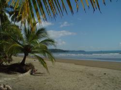 Playa Uvita, Osa