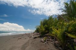 Playa Zancudo, Cantón de Golfito