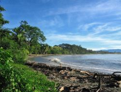 Beaches in Parrita