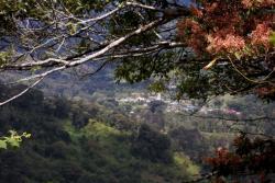 San José Province