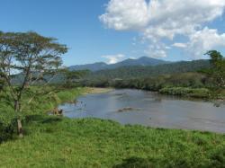 Refugio de Vida Silvestre Camaronal, Costa Rica