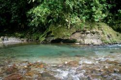 La Marta Wildlife Refuge, Costa Rica