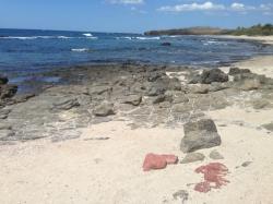 Refugio Nacional de Vida Silvestre Bahía Junquillal