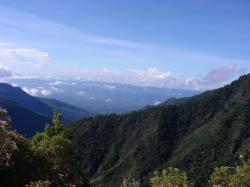 Savane de los Leones, Costa Rica