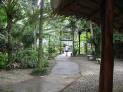Tourisme à Cahuita