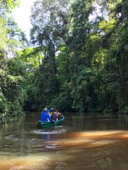 Tourism in Tortuguero National Park
